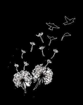 fleurs access