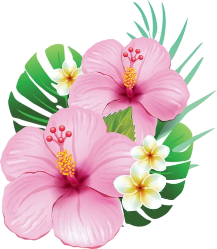 image fleur lomi